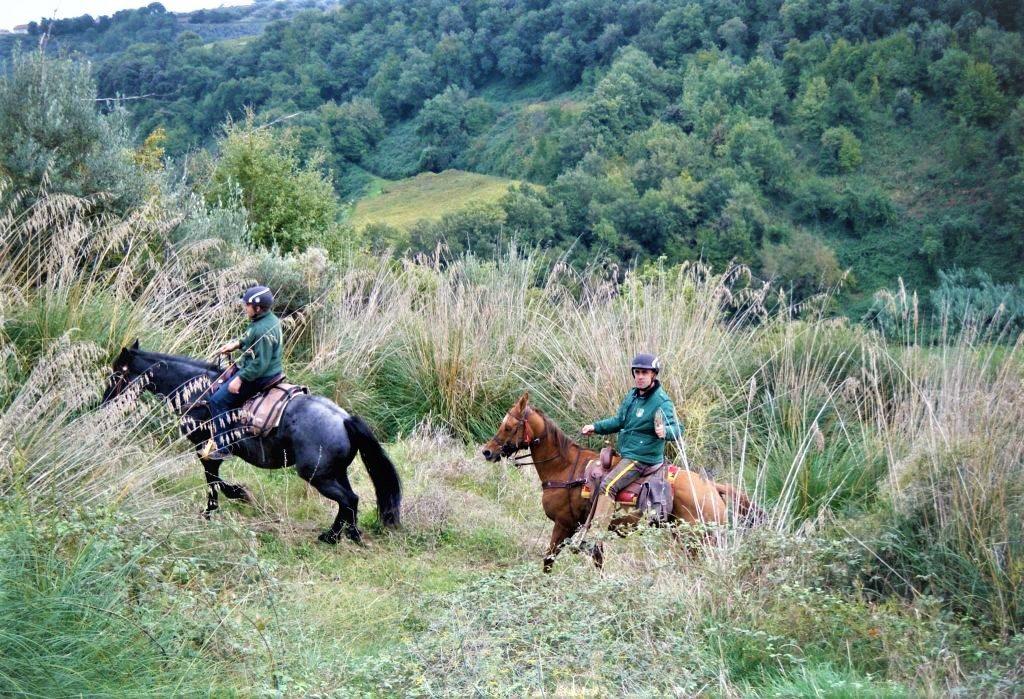 Trekking a cavallo: Giacche Verdi